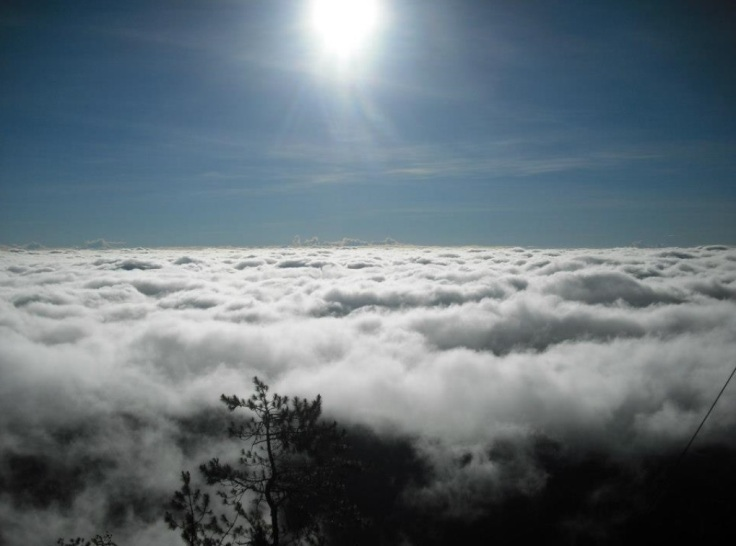 Sea of Clouds @ Mt. Pulag