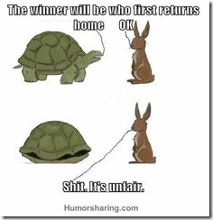 The turtle always wins
