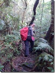 Mt. Cristobal Traverse (4/6)